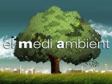 MediAmbient